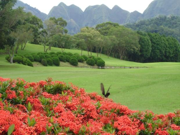 霧峰高爾夫俱樂部08