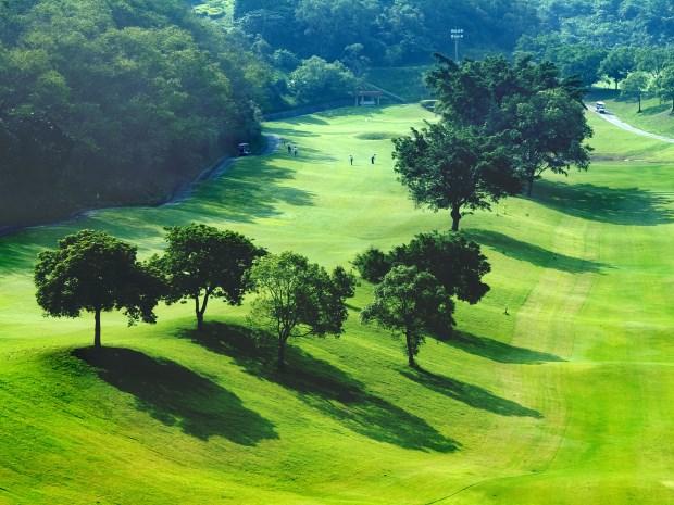 霧峰高爾夫俱樂部09